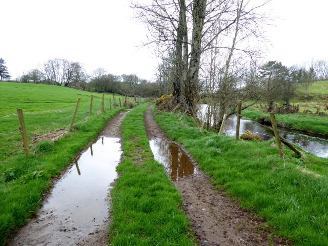 Lane along the Camowen