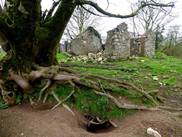 Ruined farm building, Bancran