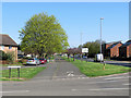 TL4759 : Barnwell Road: spring green by John Sutton