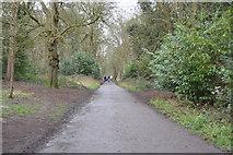TQ2363 : Path through Nonsuch Park by N Chadwick