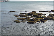 SX9063 : Rocks off Corbyn's Beach by N Chadwick