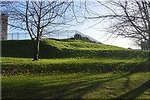 SX4754 : Millbay Park by N Chadwick