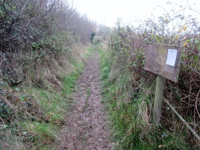 Notice board adjacent to footpath