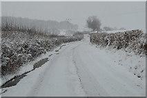 TQ5944 : Snow, Vauxhall Lane by N Chadwick