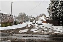 TQ5743 : Birchwood Avenue by N Chadwick
