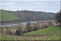 SX8158 : River Dart by N Chadwick