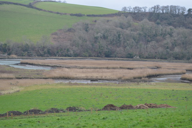 Marshes by the River Dart