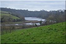 SX8158 : View down Flrrt Mill Reach by N Chadwick