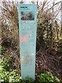 TL4609 : Blue Post in Latton Street by David Hillas
