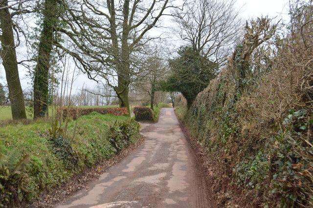 Road to Ashprington