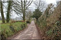 SX8257 : Road to Ashprington by N Chadwick
