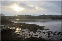 SX9072 : Teign estuary by N Chadwick