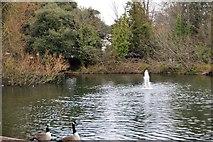 TQ2162 : Lake, Bourne Hall Gardens by N Chadwick