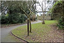 TQ2162 : London Loop, Bourne Hall Gardens by N Chadwick