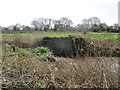 TA0545 : Once  a  bridge  over  the  Leven  Canal by Martin Dawes