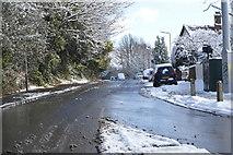 TQ5841 : Powder Mill Lane by N Chadwick