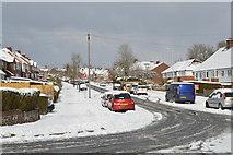 TQ5841 : Newlands Rd by N Chadwick