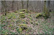 NH5857 : Surviving walls, Drummondreach Fort by Julian Paren