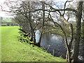 SK2181 : Footpath beside the River Derwent by John Slater