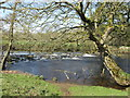 SK2380 : Weir on the River Derwent west of Leadmill Bridge by John Slater