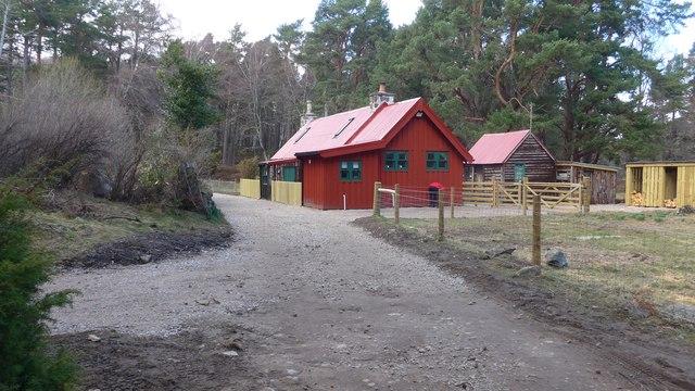 Forest Cottage, by Loch an Eilein
