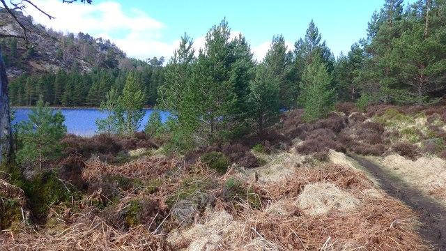 The path round Loch Gamhna