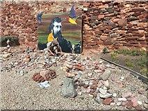 NT6779 : European Stone Stacking Championship at Dunbar by Jennifer Petrie