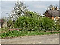 TF2065 : Reeds Beck Farm by John M