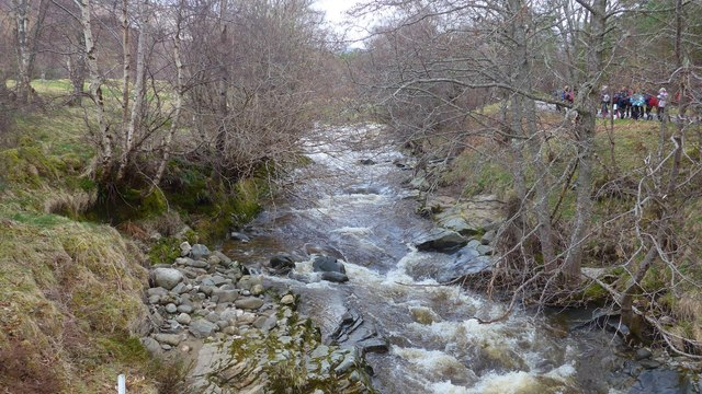 The Gynack Burn