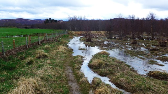Flooded path by the River Calder