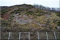 SX9473 : Cliff protection by the railway by N Chadwick