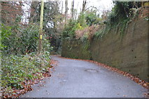 SX9574 : Smuggler's Lane by N Chadwick