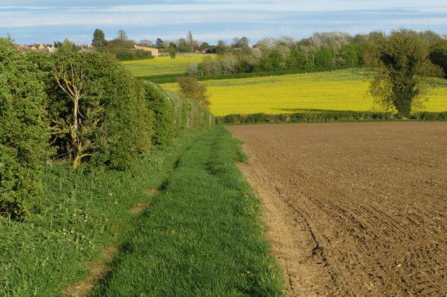 Footpath into Wollaston