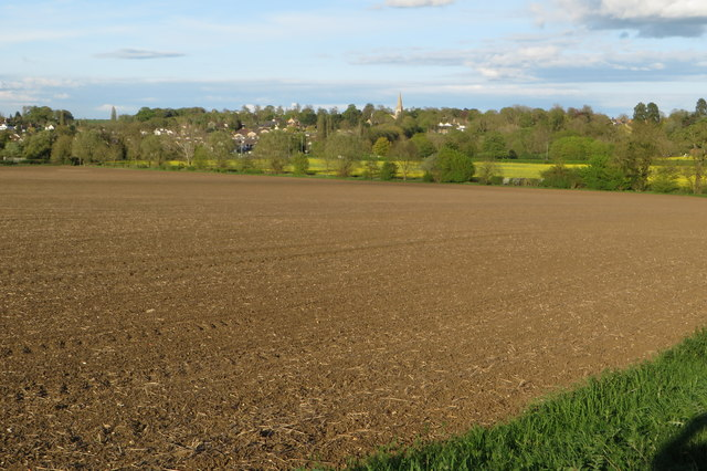 View over the field to Wollaston