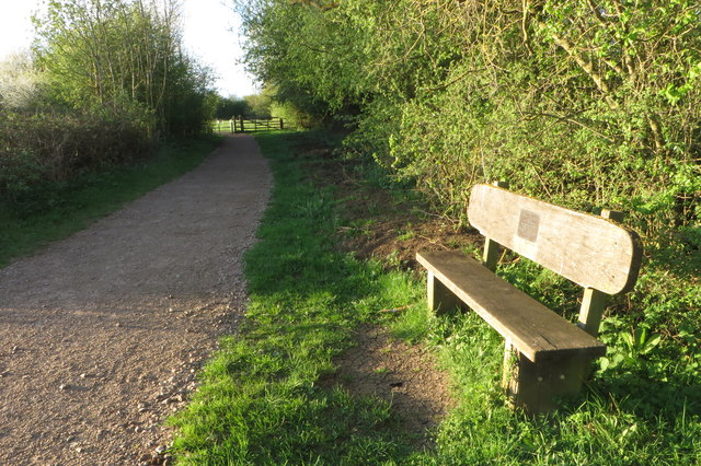 Path in Summer Leys nature reserve