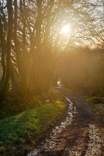 East Devon : Track
