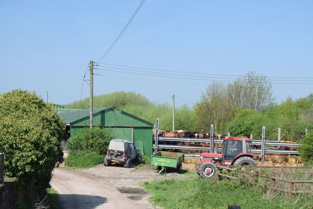 Farmyard, Bromhey Farm
