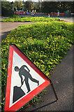 SX9065 : Dandelions, Teignmouth Road by Derek Harper