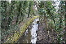 TQ2163 : Hogsmill River by N Chadwick