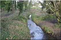 TQ2063 : Wooded stream by N Chadwick
