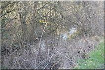 TQ2063 : Hogsmill River by N Chadwick