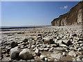 TA2168 : Sewerby Rocks : Week 16