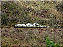 SN7078 : A Vale of Rheidol train heads up the valley by John Lucas