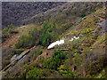 SN7178 : A Vale of Rheidol train by the old Pant-mawr mine workings : Week 17