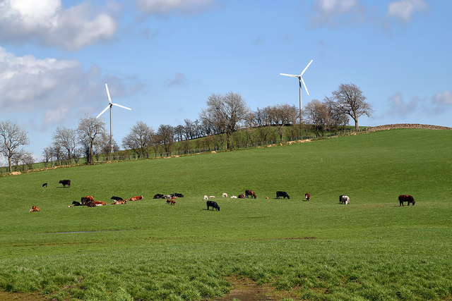 Farmland at Auchengibbert