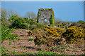 SW5529 : Rosudgeon : Rosudgeon Common by Lewis Clarke