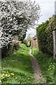 SY6489 : Footpath behind Church, Martinstown by Becky Williamson