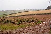 SX8058 : Red soils by N Chadwick