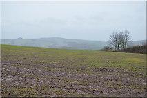 SX8058 : Muddy field by N Chadwick
