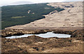 NM4920 : Northern shore of Lochan Gleann Dubh Mhurchaidh by Trevor Littlewood